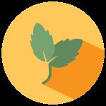 mint-icon